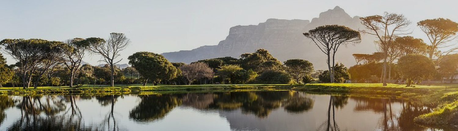Willow-Way Cape Town